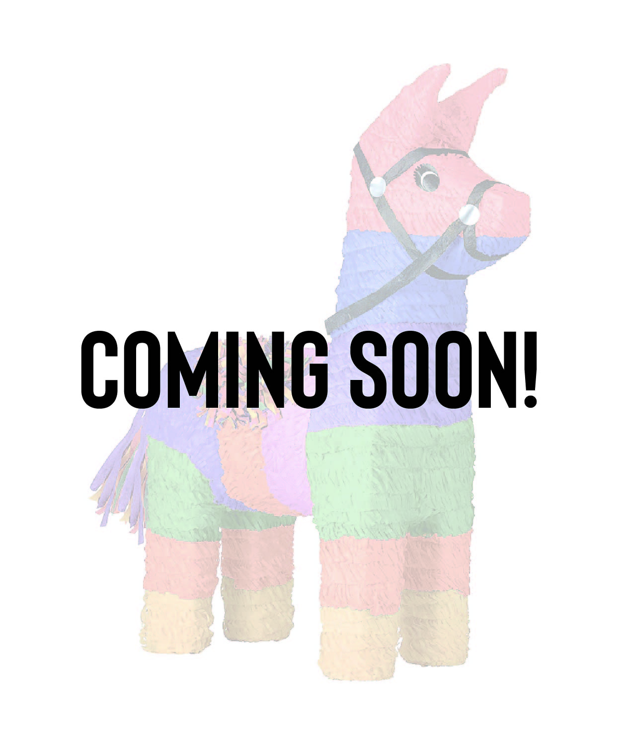 Coming Soon Pinata Order